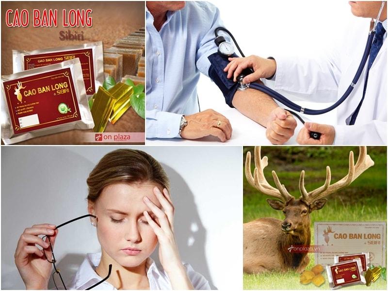 công dụng của cao ban long với người bệnh huyết áp thấp
